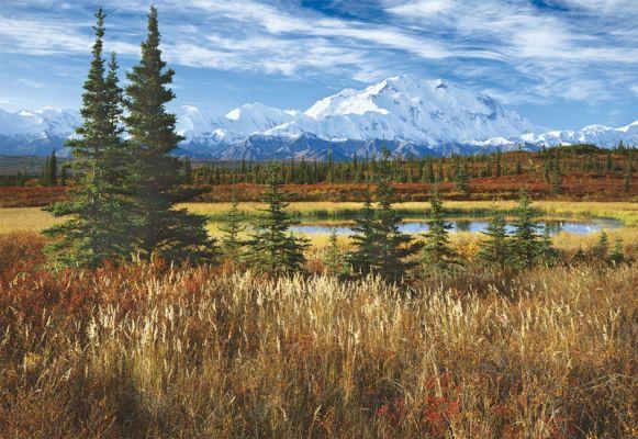 """Картонен пъзел """"Национален парк Денали, САЩ"""" - 1500 части"""
