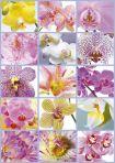 """Картонен пъзел """"Колаж от цветя"""" - 1500 части"""